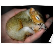 """Sh-Sh-Sh, Baby Sleeping"" Poster"