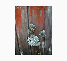 The lichen covered walls of Waldheim, Tasmania, Australia. Unisex T-Shirt