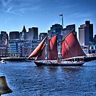 Sail Boston - Beautiful Roseway by LudaNayvelt