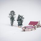 Snowbound by Christina Backus