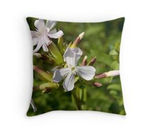 Bouncing Bet (Saponaria officinalis) Throw Pillow