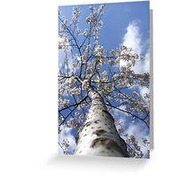 Forgotton Tree Greeting Card