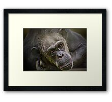 Take me home ........ Framed Print