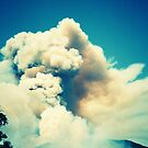 Forest Fire in Provence by cormacphelan