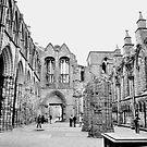Holyrood abbey, Edinburgh. 3. by Finbarr Reilly