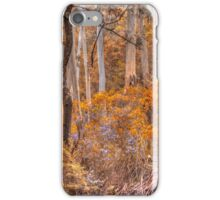 Experiments In Processing -  Mt Wilson - The HDR Experience iPhone Case/Skin