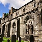 Dunkeld abbey, side view. by Finbarr Reilly
