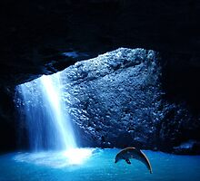 Luminescent dolphin cave by brielle546