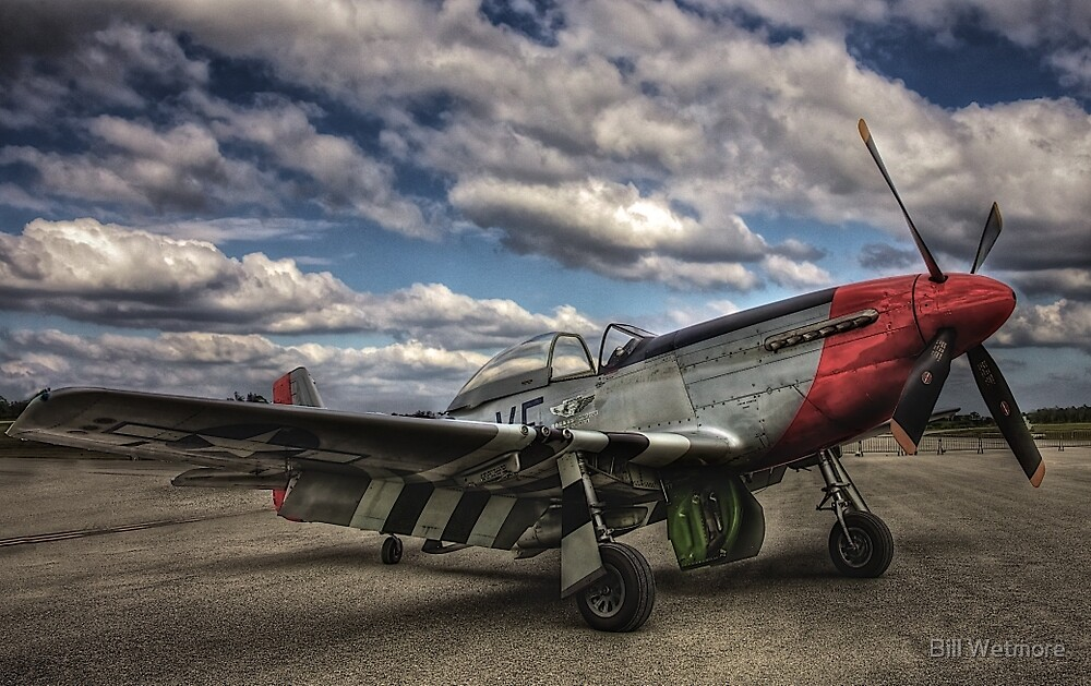 Mustang P-51D by Bill Wetmore
