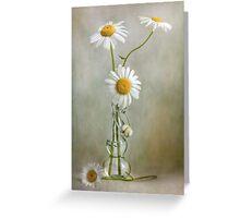 Daisies still life Greeting Card