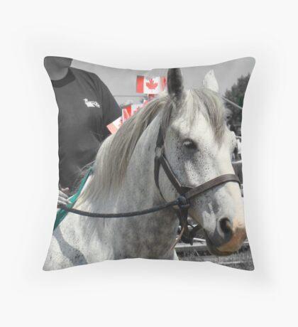 Show Grey Percheron II Throw Pillow