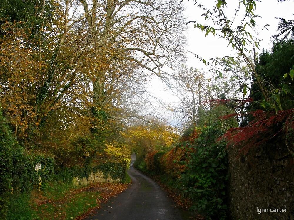 Winding Lane At Lyme Dorset UK by lynn carter