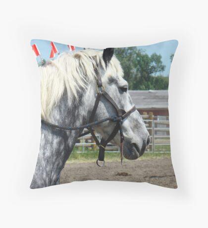 Grey vs Black Throw Pillow