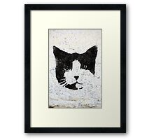 Macavity, The mystery Cat Framed Print