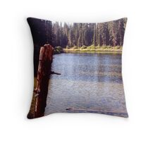 Kelly Lake Throw Pillow