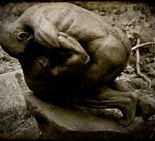 Sisyphus by Catherine Hadler