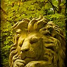 Nero, gentle lion by Catherine Hadler