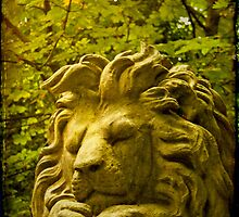Nero, gentle lion by Catherine Hadler