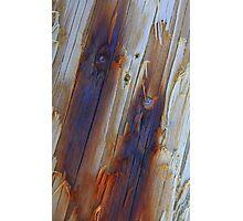 Blue Scars Photographic Print