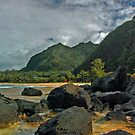 Another beautiful Kauai vista by milton ginos