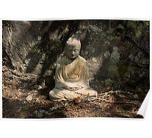 Buddha and Shadows  - Scotland  Poster
