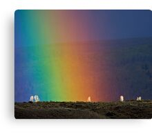 Rainbow Air, Ghost Trees Canvas Print