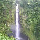 Akaka Waterfall by alleycatshirts