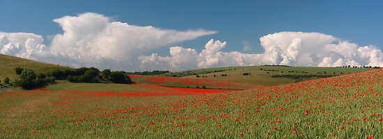 Dotted hills, rising clouds by zumi