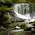 Winter Oasis - Horseshoe Falls, Mt. Field, Tasmania by TraceyLea