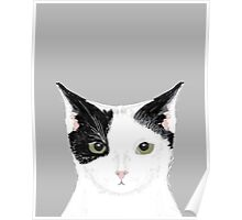 Manny - Black and white cute cat gift cat person cat lady funny cat meme pet portraits customizable  Poster