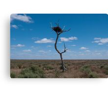 Lone tree, very lonely nest Canvas Print