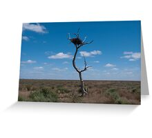 Lone tree, very lonely nest Greeting Card