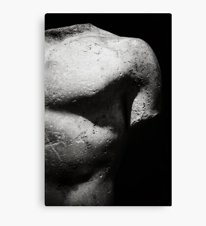 Body. Canvas Print