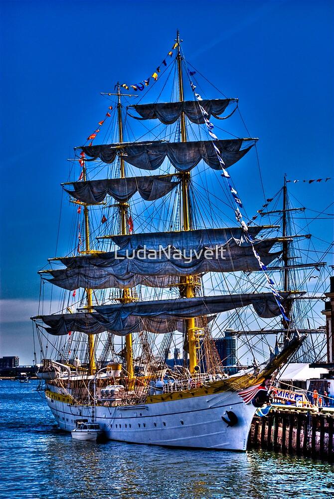 Sail Boston Mircea  ( front view) by LudaNayvelt