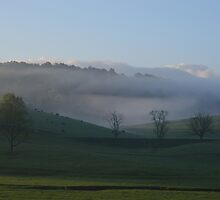 Fog Over Cows by Karen Checca