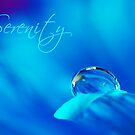 Serenity  by trwphotography