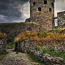 Bohus Fästning by Beth A