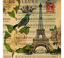 white roses vintage eiffel tower music notes art Photographic Print