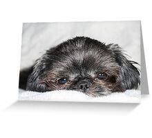 Mitzy Greeting Card