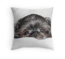 Mitzy Throw Pillow