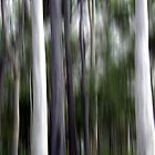 Ghost Gums by Kitsmumma