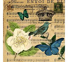 classic vintage butterfly rose music notes art Photographic Print