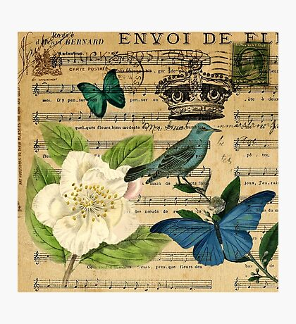 vintage Bird butterfly rose music notes Paris Photographic Print