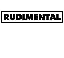 Rudimental UK Drum'n'bass DJ by mrrj