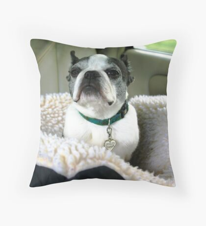 I Hate to Be a Bother Throw Pillow