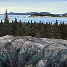 View of Pic Island from the Southern Headland Trail in Pukaskwa National Park by loralea