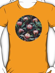 Evening Proteas - Pink on Charcoal T-Shirt