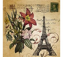 vintage retro paris eiffel tower lily floral botanical art Photographic Print
