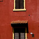 Red House, Yellow Frames by Ilva Beretta