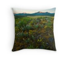 Sawtooth Valley, Head Waters of the Salmon. Throw Pillow